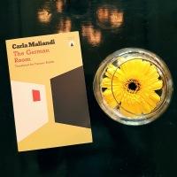 The German Room - Carla Maliandi (tr. Frances Riddle)